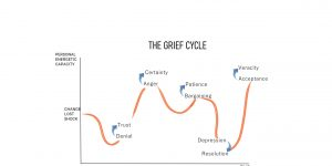 THE GRIEF CYCLE OR CHANGE
