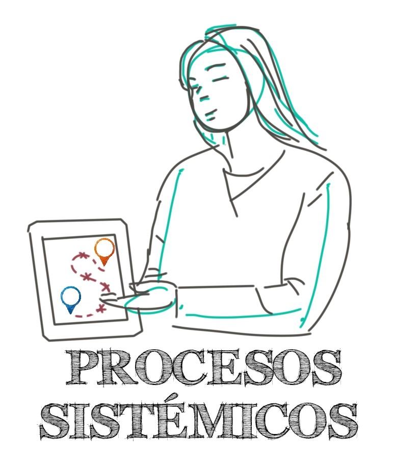 facilitación sistémica.procesos sistémicos
